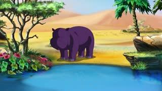 Little African Hippo UHD