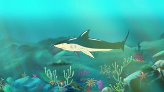 Shark Underwater. Big shark swimming in a ocean. Full color handmade animation in HD