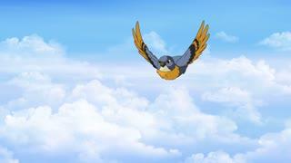 Bird in Flight. Front View