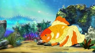 Goldfish Floating in Aquarium