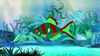 Red-green Aquarium Fish in a tank
