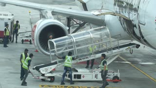 Airport Staff Loading Baggage into Plane in Airport