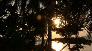 Beautiful Sunset at Lake through Trees. Slow Motion.