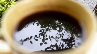 Close up of Tree Reflection in Cup of Coffee.