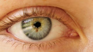 Close up Video of Blue Eye. Macro.
