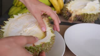 Closeup of Durian - Popular Tropical Fruit in South East Asia