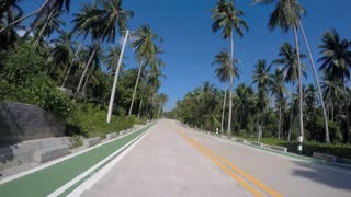 Countryside Jungle Road with Palm Trees in Thailand. Timelapse.