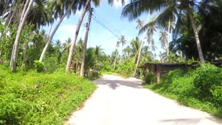 Driving on Motorbike on Rural Road in Jungle. Time Lapse.