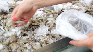 Female Hand Choosing Fresh Raw Shrimp at Market