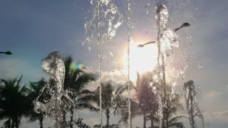 Fountain Water Stream Splashing against Palm Tree and Blue Sky