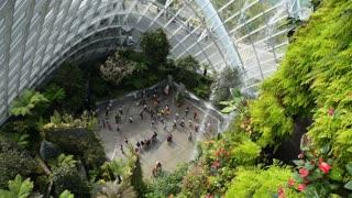 Gardens By the Bay, Botanic Green Garden or City Park