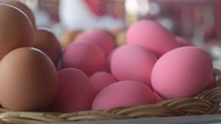 Сlose Up of Pink Eggs