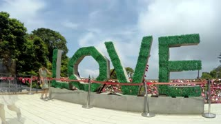 Love Word Made of Green Grass. Love and Peace Concept. Time Lapse.