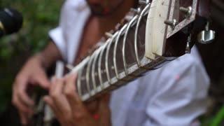 Man Singer Playing Sitar Guitar Closeup