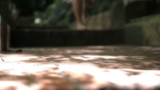 Woman Legs Running In Forest. Slow Motion