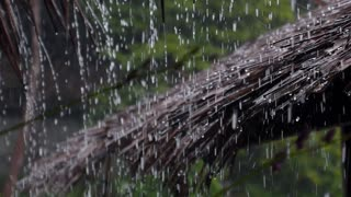 Water Drop Falling on Straw Roof, Raining on Hut