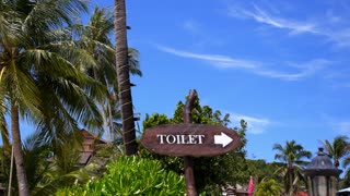 WC Sign on the Beach with Palm Trees. Toilet Sign in Tropics.