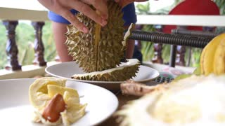 Woman Peeling Exotic Durian Fruit in Tropical Thailand