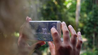 Woman Using Smart Phone Take a Photo of Tiger in Zoo