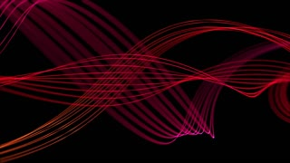 Smooth Elegant Curved Lines Looped Motion Background Pink Red Magenta