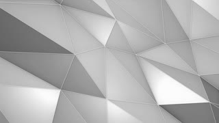 Elegant Polygonal Surface | Triangular Polygons with Outlines | Low Poly Waves on a Plane Surface | Seamless Loop | Motion Background | Full HD 1920 1080 Silver White Gray Grey