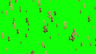 Gold Dollar Signs Falling or Raining From The Sky Green Screen Seamless Loop