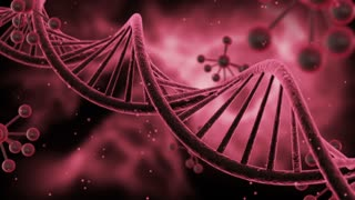 Science Fiction Spinning DNA Molecules Seamless Looping Motion Background | Sci Fi Animated Video Loop Animation of Double Helix Deoxyribonucleic acid Structure | Full HD 1920 X 1080 | Red Pink