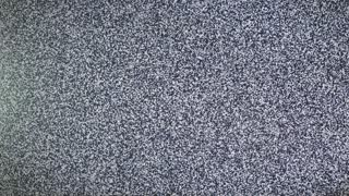 TV Noise Black Screen No Signal HD Loopable