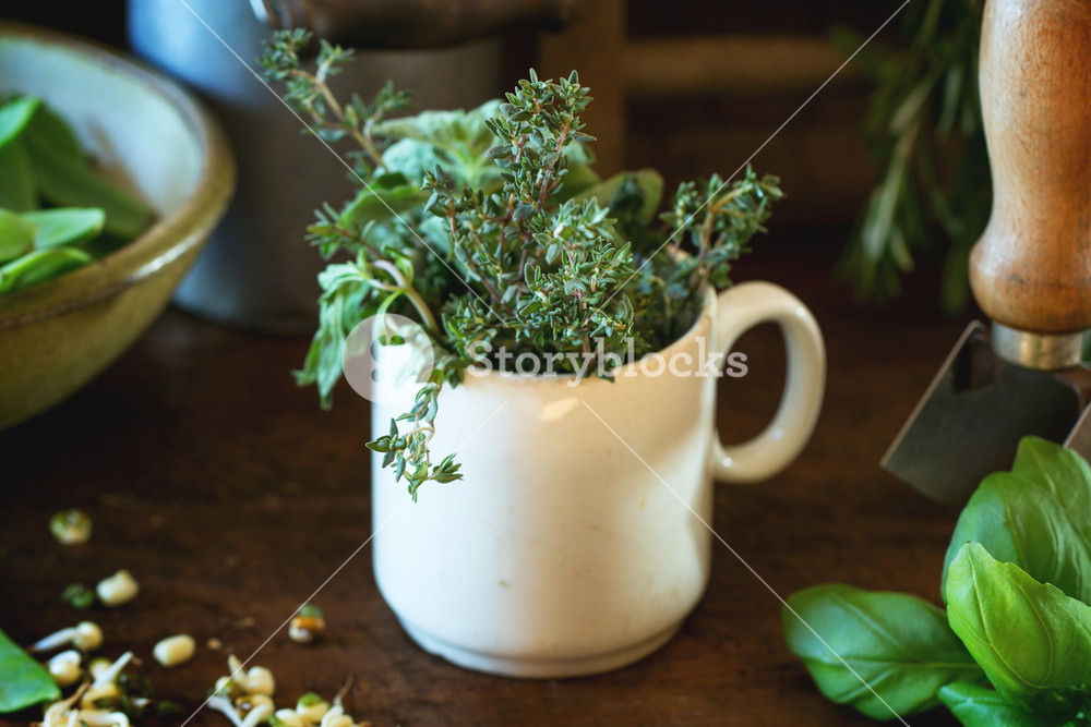 Herbs And Young Sweet Peas