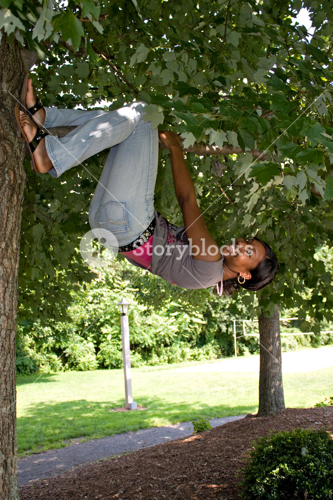 A pretty young woman playfully hangs from a tree limb.