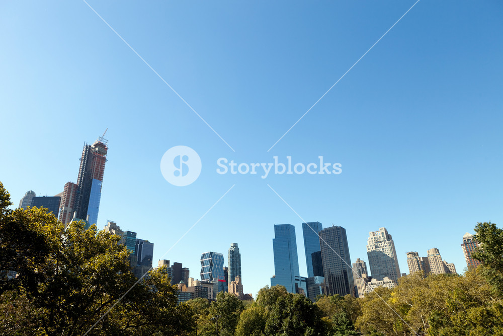 A view of the trees and New York City skyline from Central Park near midtown Manhattan.