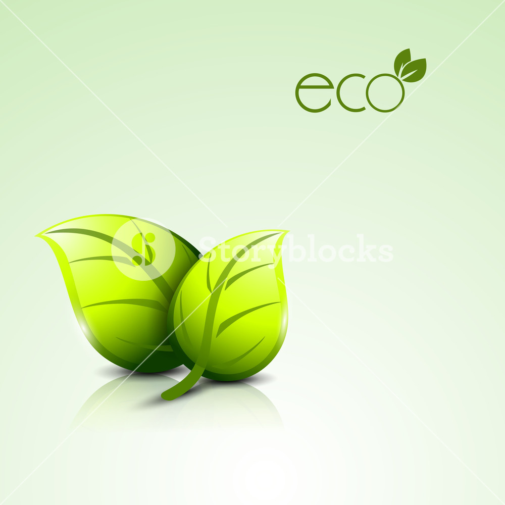 Abstract Nature Background With Green Leaves And Text Eco