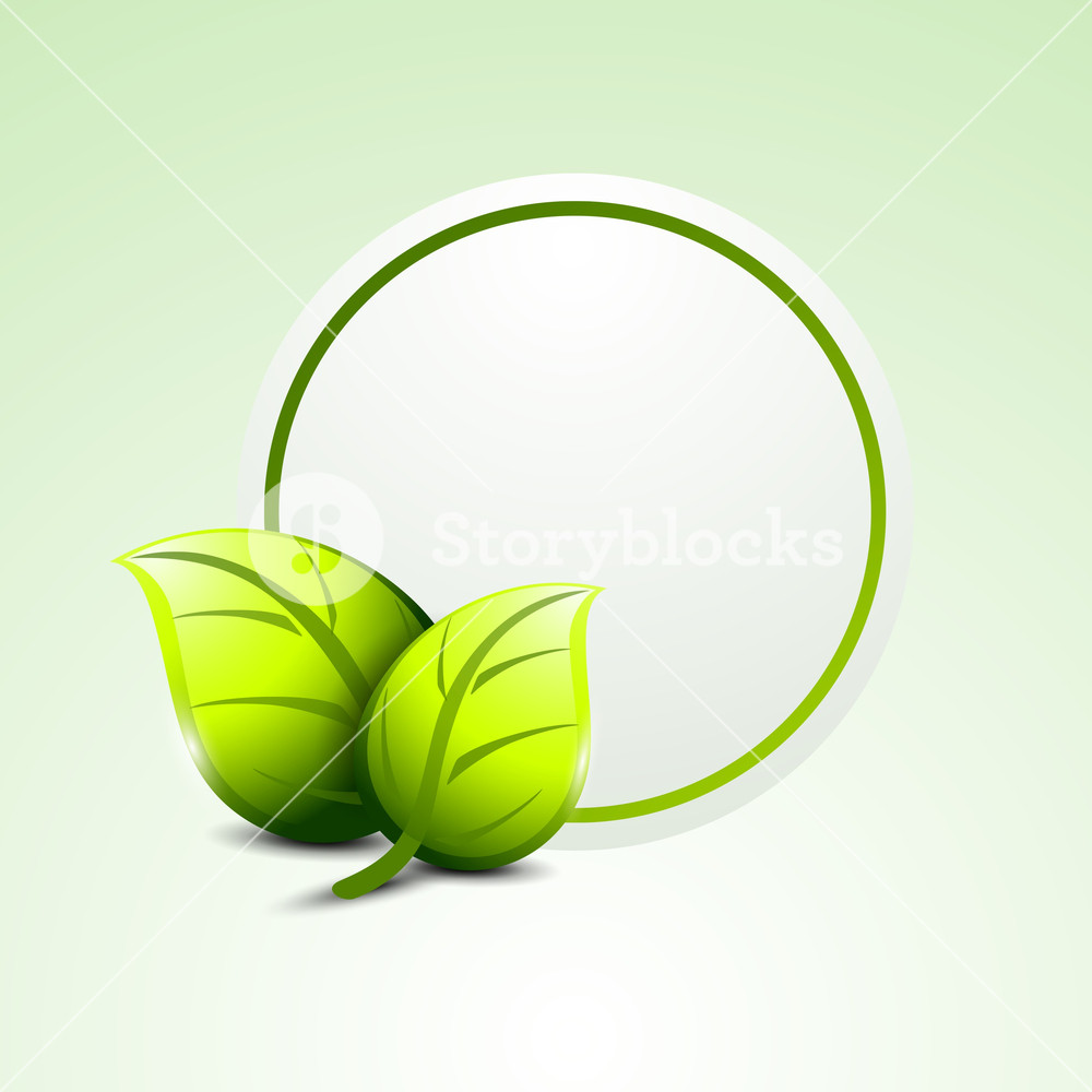 Abstracty Nature Concept With Green Leaves