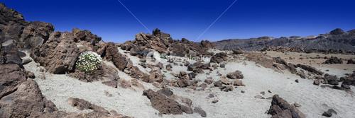 Arid, rocky landscape under a blue sky