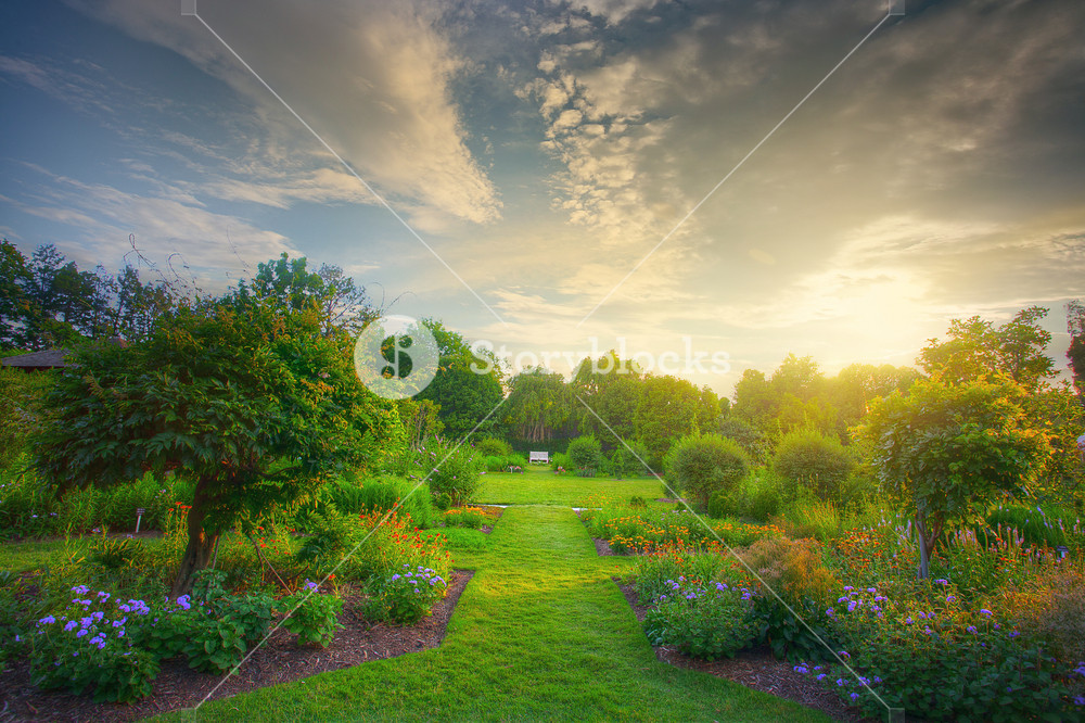 Beautiful garden scene during sunset.