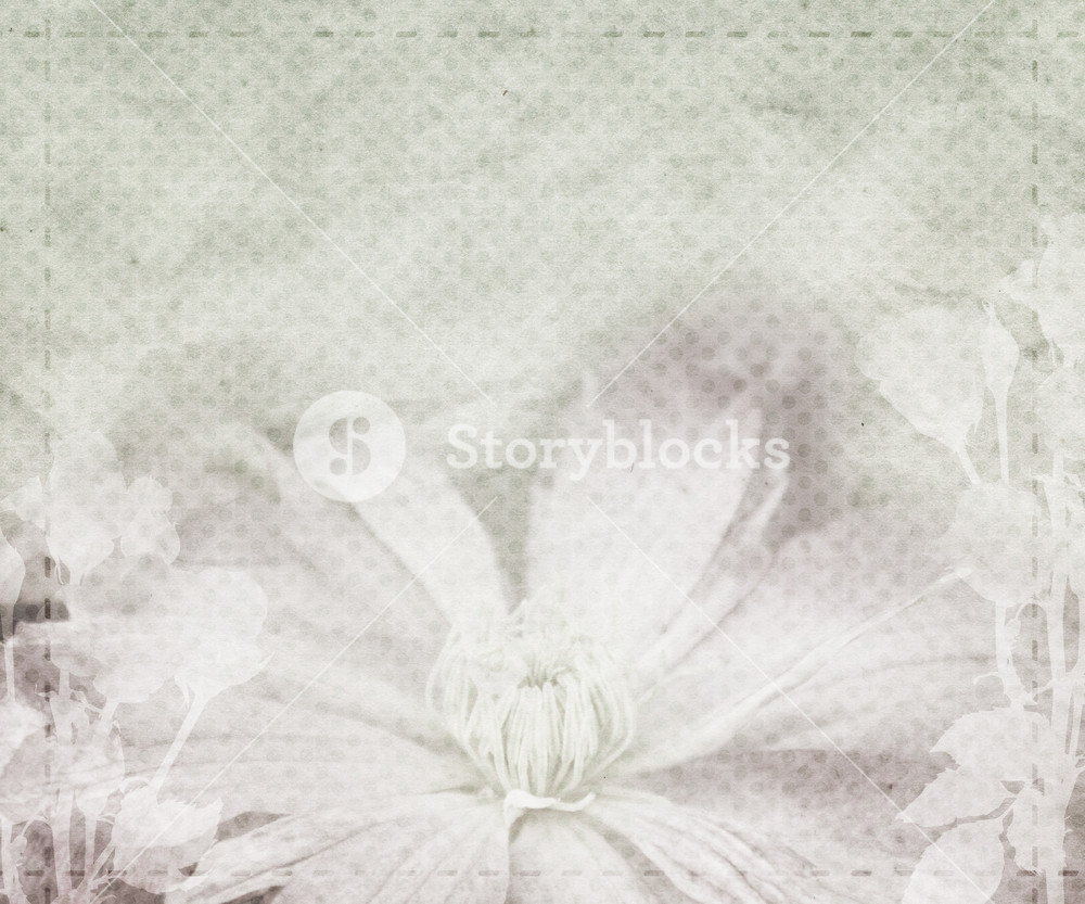 beautiful wedding vintage background royalty free stock image storyblocks https www storyblocks com business solution license comparison