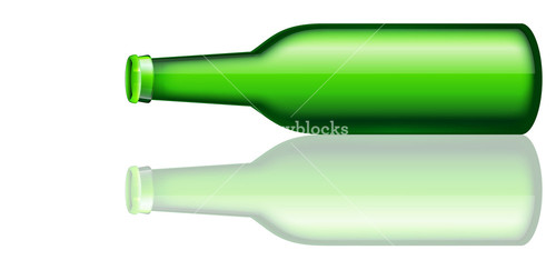 Beer Bottle Lying On Floor