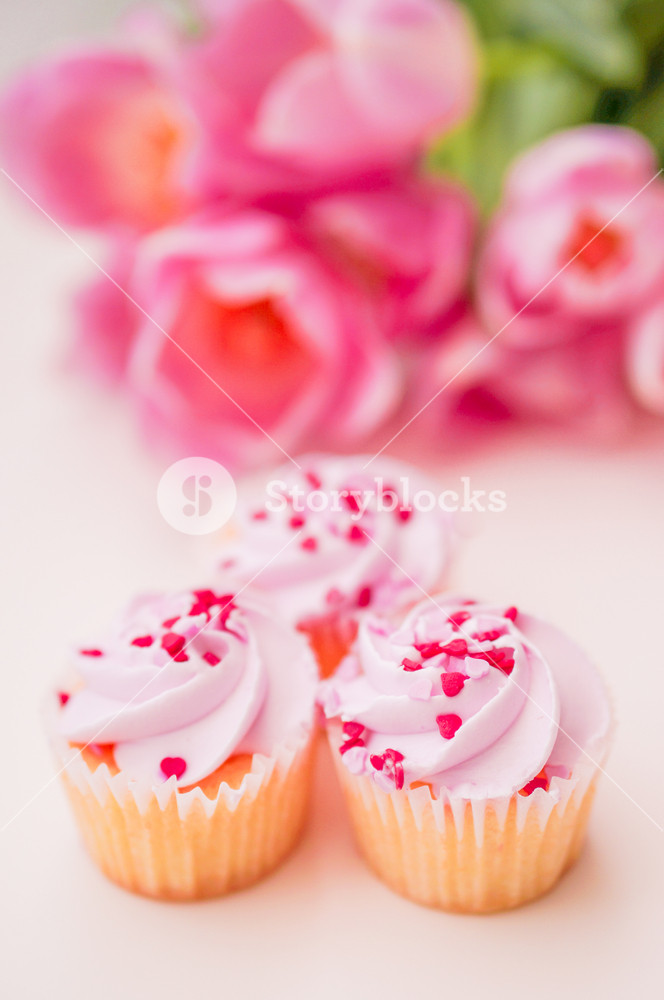 Cupcakes With Pink Cream
