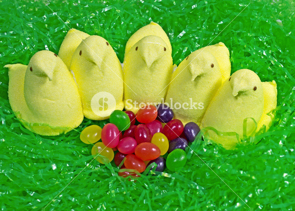 Easter Peeps With Jelly Beans