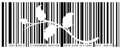 Flourish Barcode