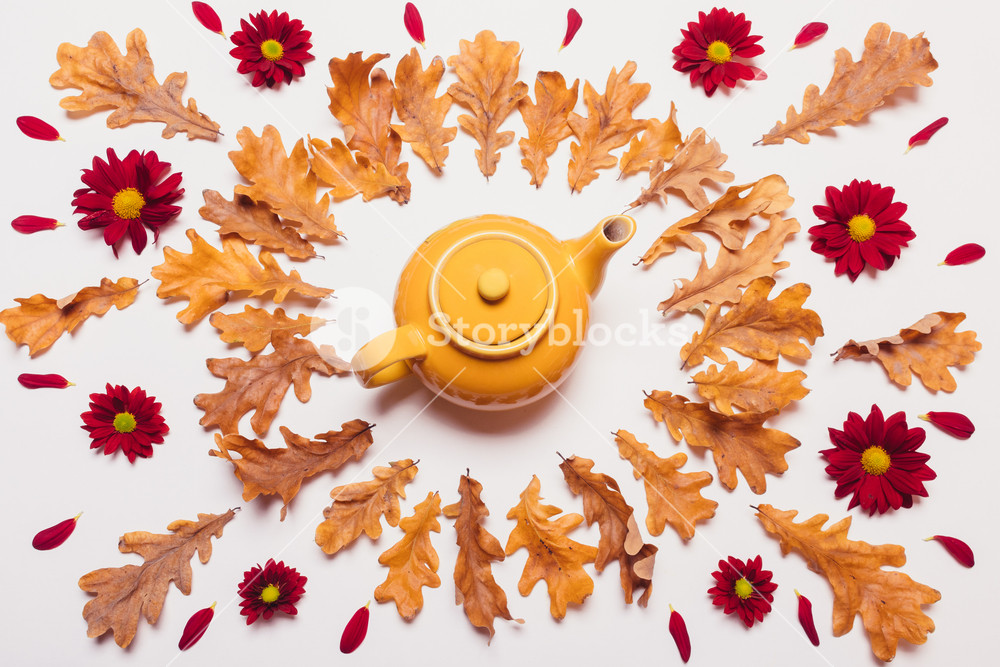Arrangement of the yellow teapot, dry leaves and red flowers with petals on a white background, flat top view
