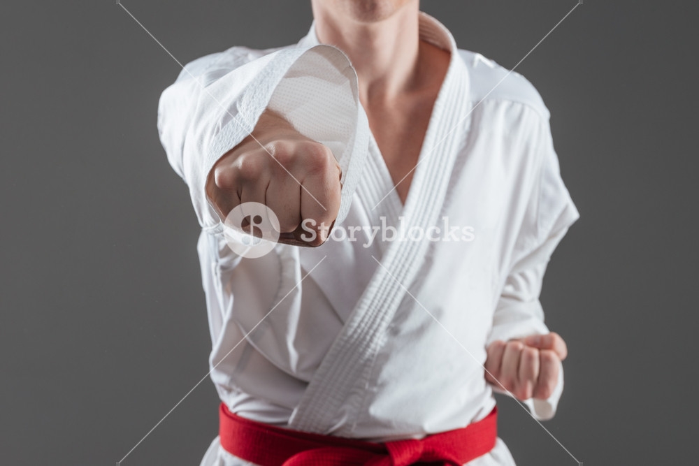 Cropped photo of handsome sportsman dressed in kimono practice in karate isolated over grey background.