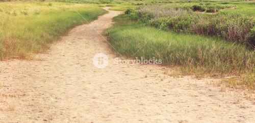Sandy pathway trail through a grassy area