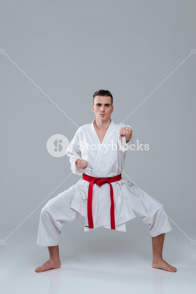 Young sportsman dressed in kimono practice in karate isolated over grey background. Looking at camera.