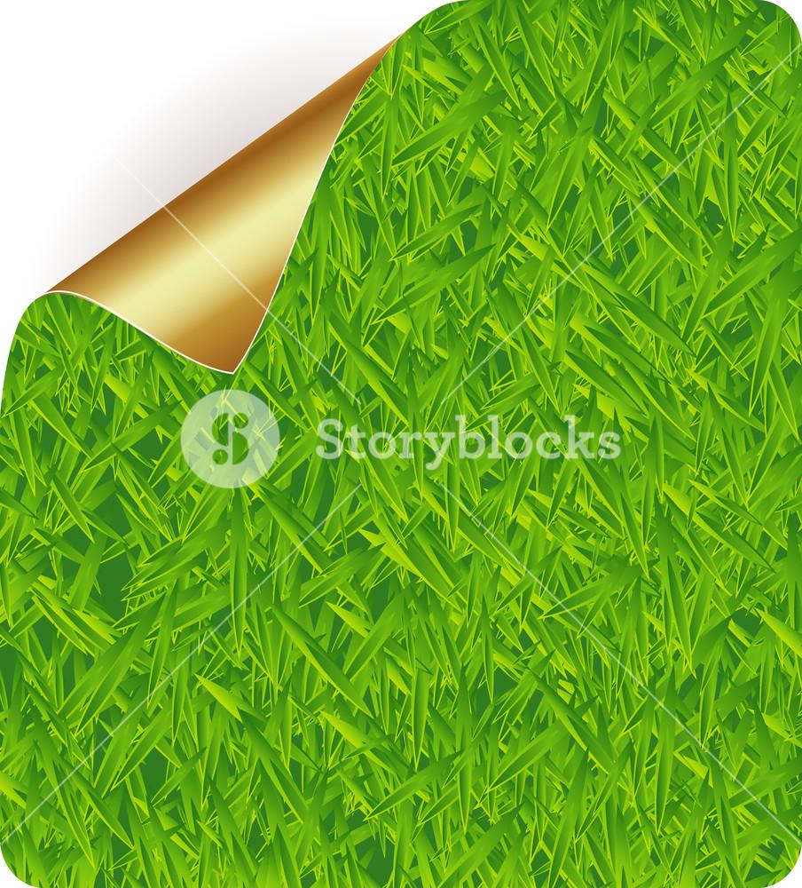 Grass Sticker.