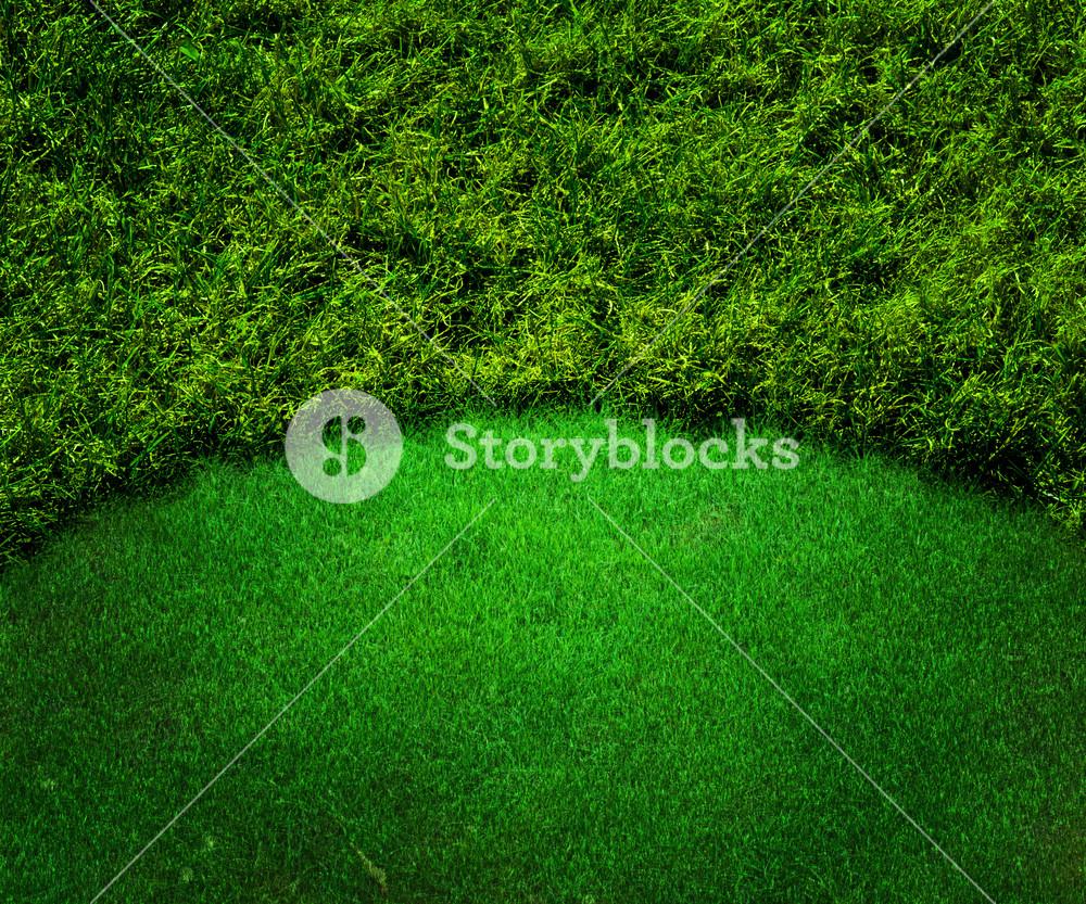 Green Golf Background Grass Texture
