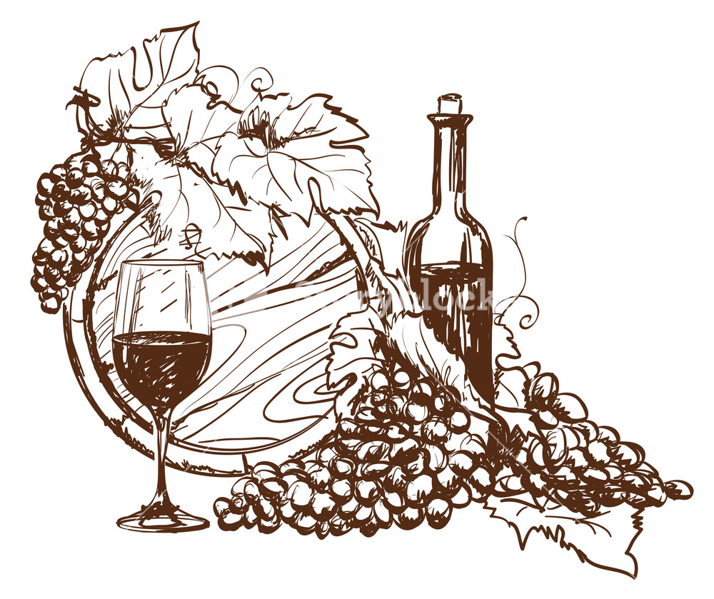 Hand Drawn G rapeseed And Bottle Of Wine. Vector