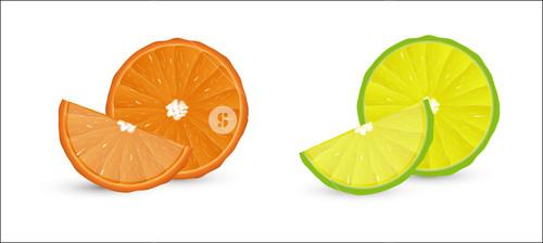Lemon And Orange Slices Vector