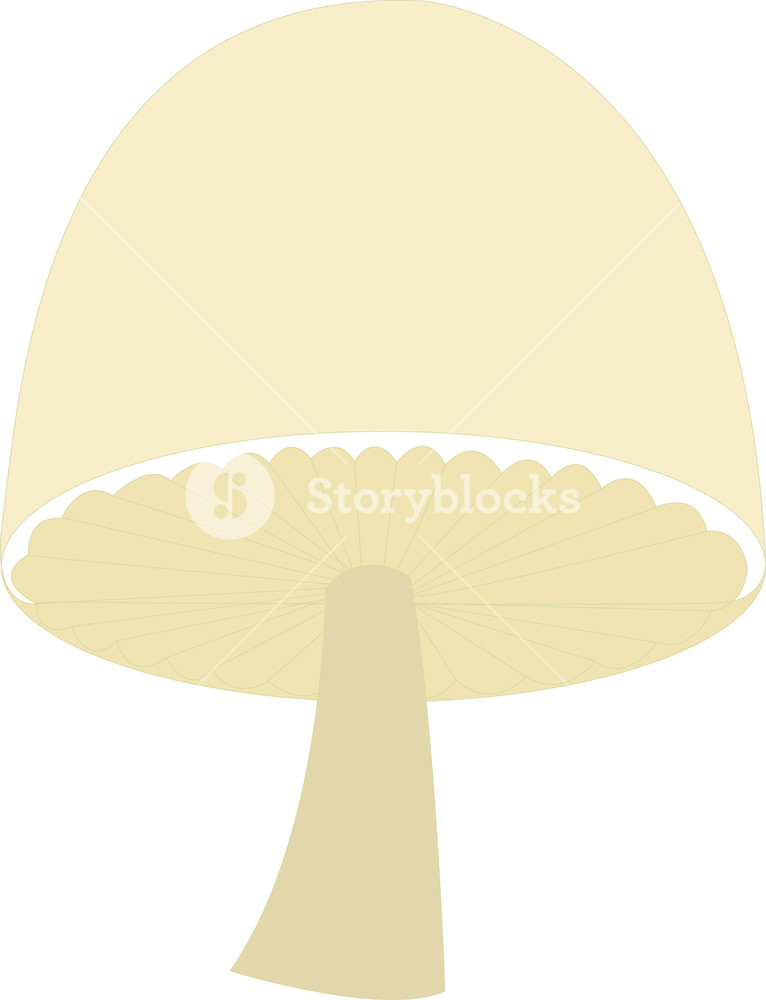 Mushroom Clipart Royalty Free Stock Image Storyblocks All of these mushroom clipart resources are for free download on pngtree. storyblocks