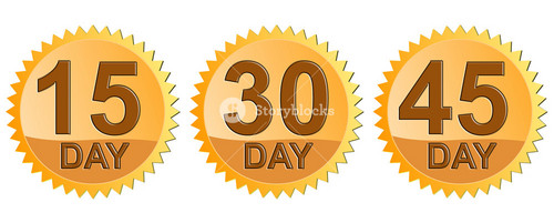 Number Day In Gold Seal Icon